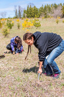 Arbor Day Earth Week Tree Planting Kangaroo Lake by Len Villano